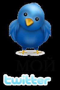 Твиттер Марина Шамина