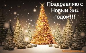 Новый 2014 год, поздравление с новым годом, новый год, поздравление, праздник, лес
